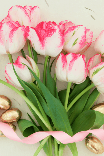 Bouquet of tulips with ribbon and Easter candy
