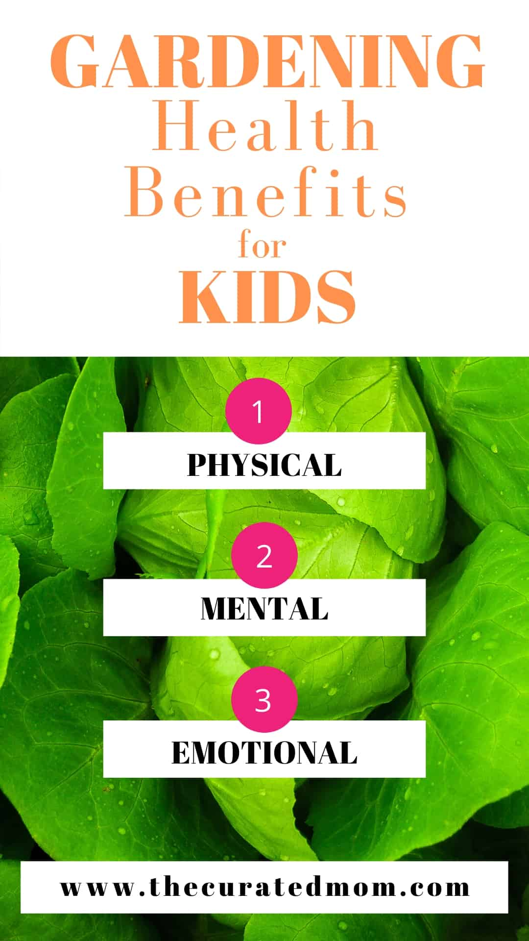 Spinach leaves in the importance of gardening post with text reading gardening health benefits for kids 1) physical 2) mental 3) emotional