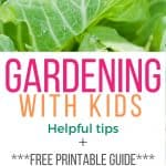 Cabbage leaves with text reading gardening with kids, helpful tips, free printable guide easy to grow seeds www.thecuratedmom.com