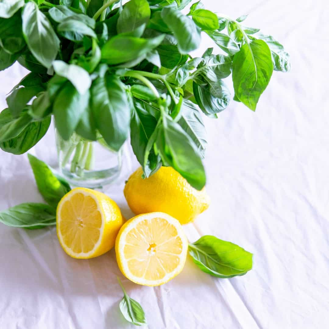 Fresh basil and lemons on a table 10 Favorite Herbs for Kitchen Gardening