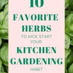Basil in the background with text reading 10 Favorite Herbs to Kick Start Your Kitchen Gardening Habit