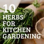 Fresh rosemary wrapped in twine with text reading 10 Herbs for Kitchen Gardening
