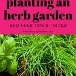 Girl holding fresh herbs outside with text reading Beginner Tips and Tricks for Planting an Herb Garden