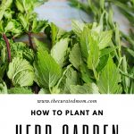 Fresh herbs on rustic blue wood with text reading How to Plant an Herb Garden